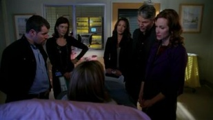 Private Practice 03x17 : Triangles- Seriesaddict